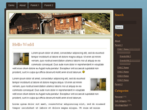 Exhausted WordPress Theme