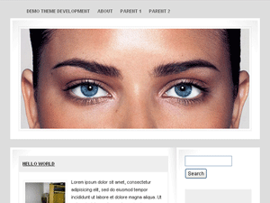 Not So Sleek WordPress Theme