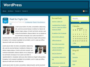 Pride WordPress Theme